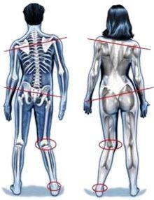 Körperstatikanalyse